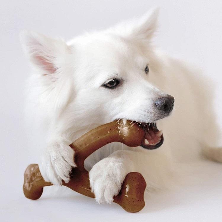 Benebone dog Chew Toy
