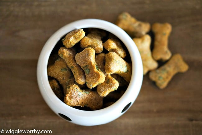 Low-Calorie Pumpkin Spinach Dog Treat