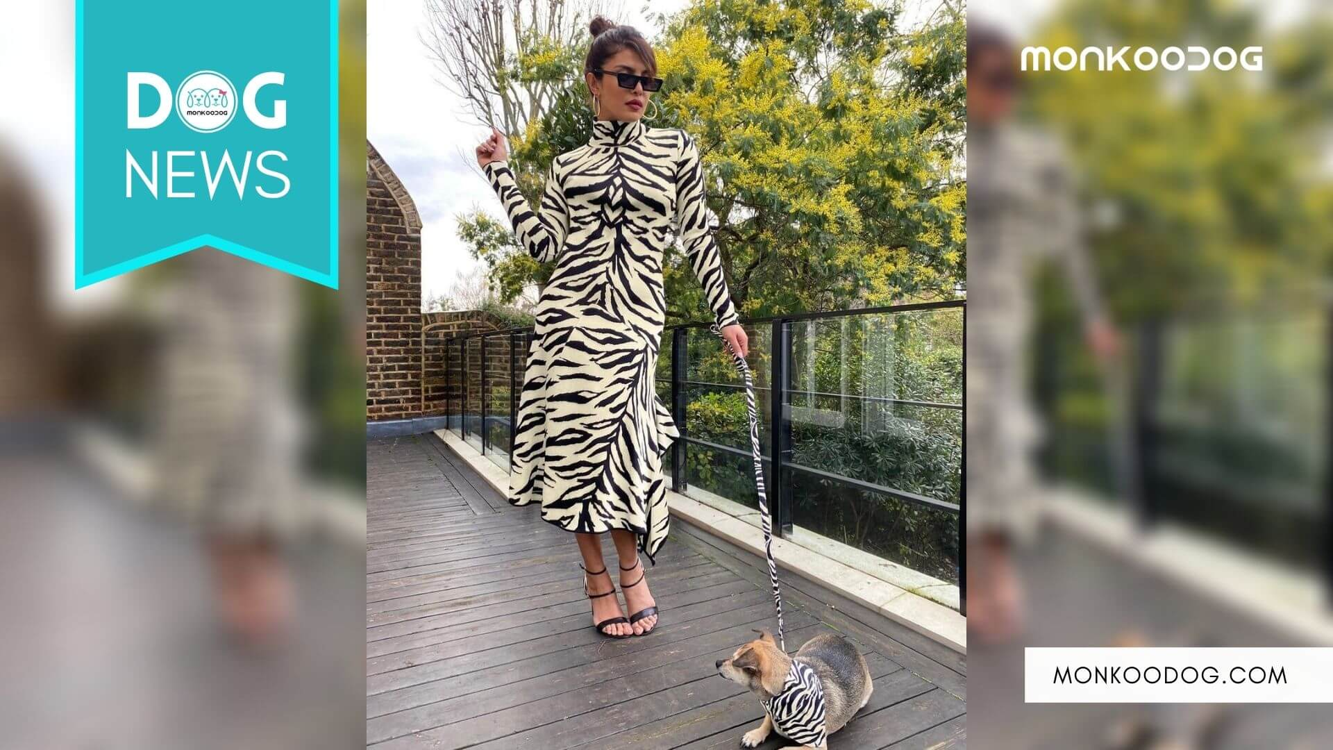 Priyanka Chopra Jonas and pet dog Diana gives twinning a new meaning with their adorable new look