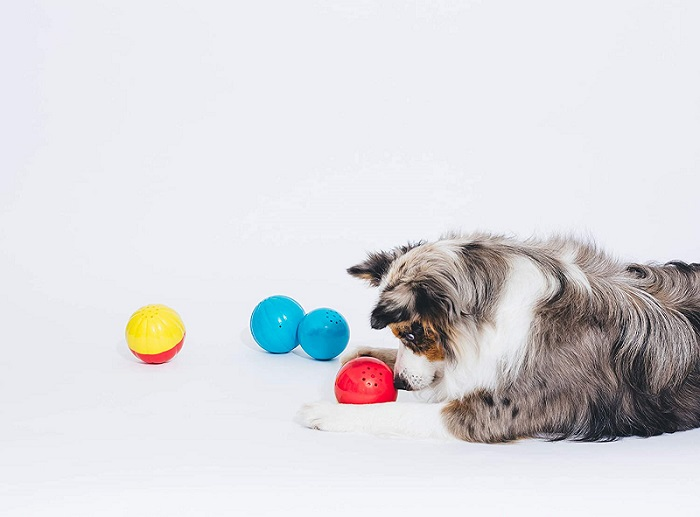 Talking Babble Ball by Pet Qwerks