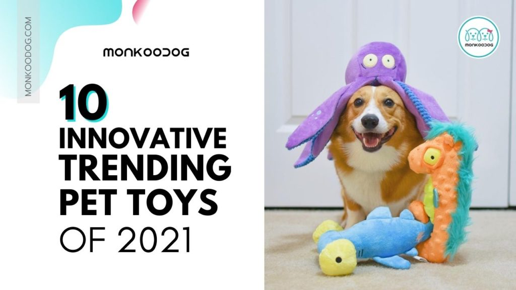 Top 10 innovative ideas of trending pet toys of 2021