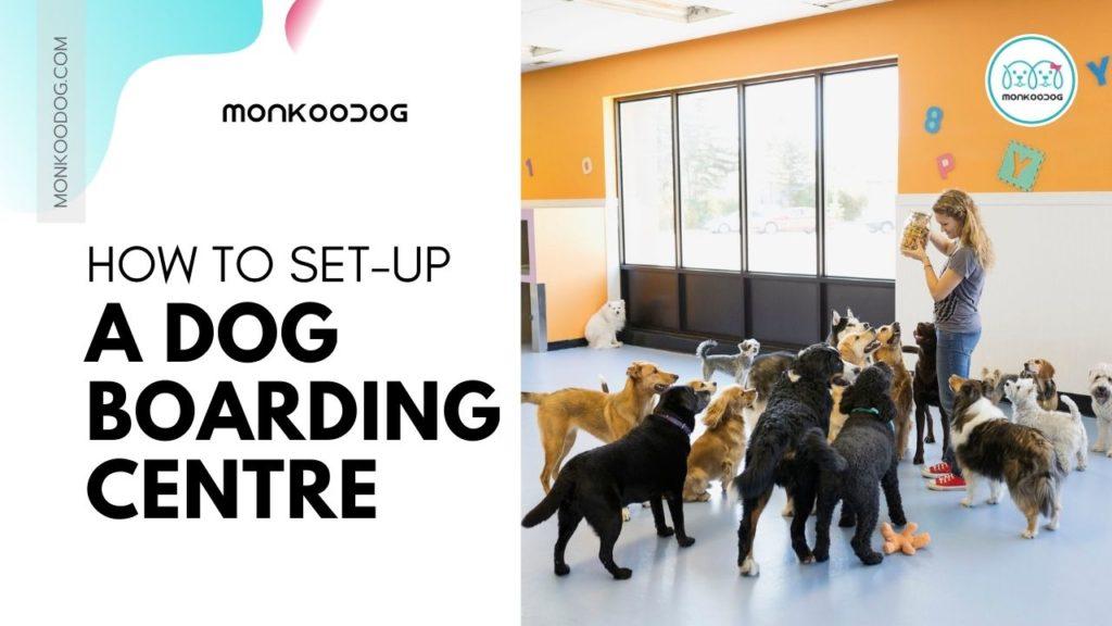 How to setup a dog boarding centre