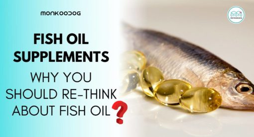 What Are The Benefits Of Giving Fish Oil To A Puppy