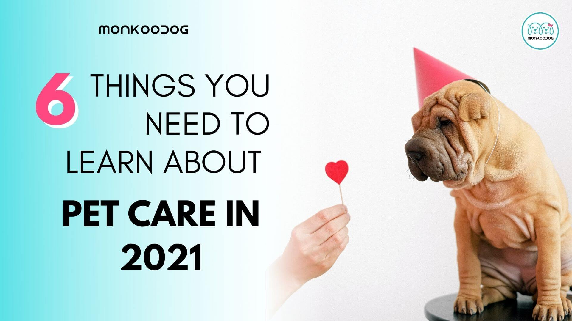6 things you need you need to learn about pet care in 2021