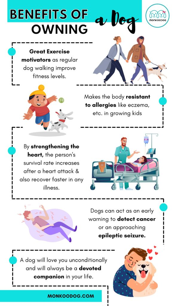 Benefits of owning a dog in a family infographic by monkoodog
