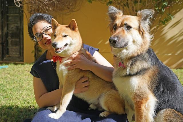 Meet Akira, World's Smartest Dog