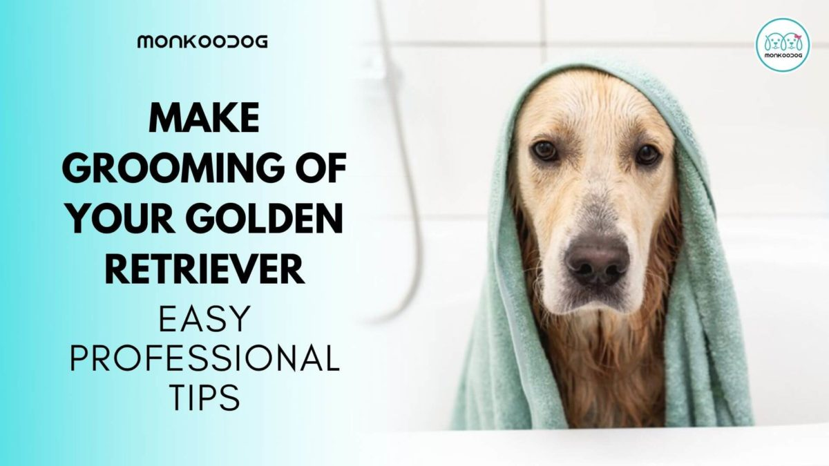 Make Grooming of your Golden Retriever easy with these Professional Tips