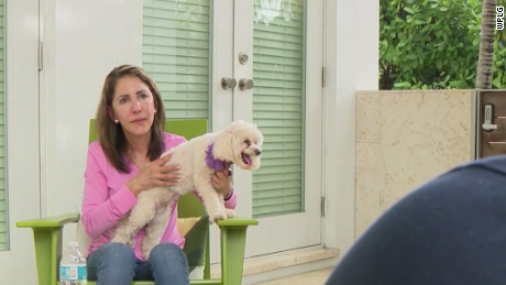 Therapy Dogs helping families of the missing
