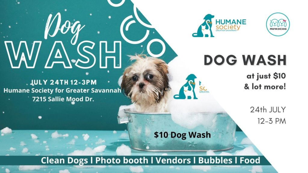Beat the heat with HSGS Charity Dog Wash & Splash Party