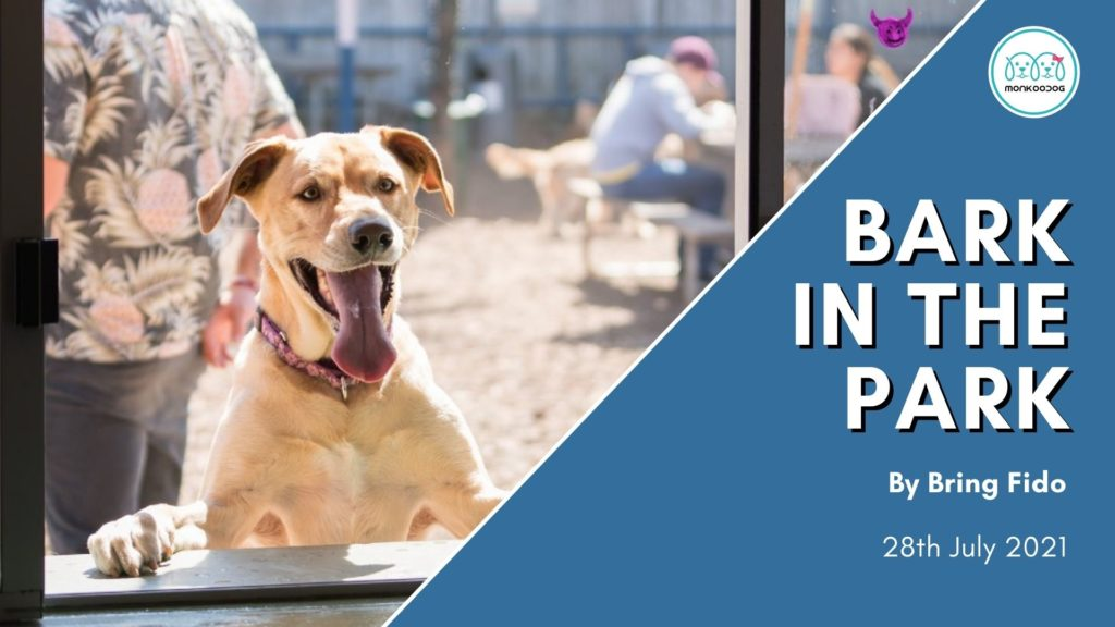 Bring Fido to enjoy Bark in the Park!!