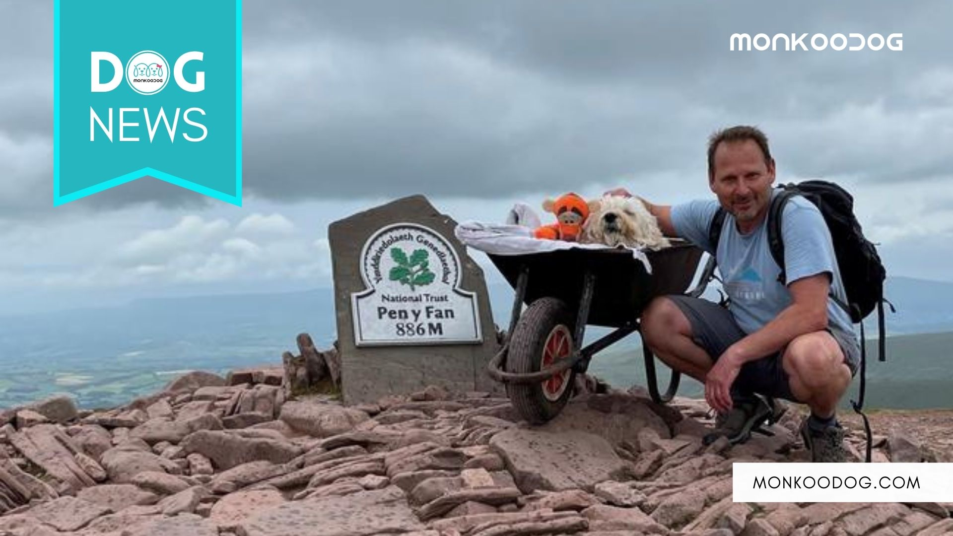 Dog Parent Takes His Dying Dog On Its Last Adventure Up A Mountain In A Wheelbarrow