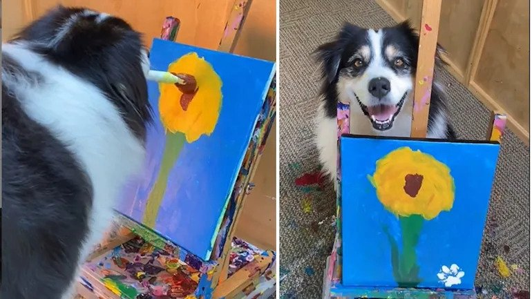 Dog astonishes the netizens by painting