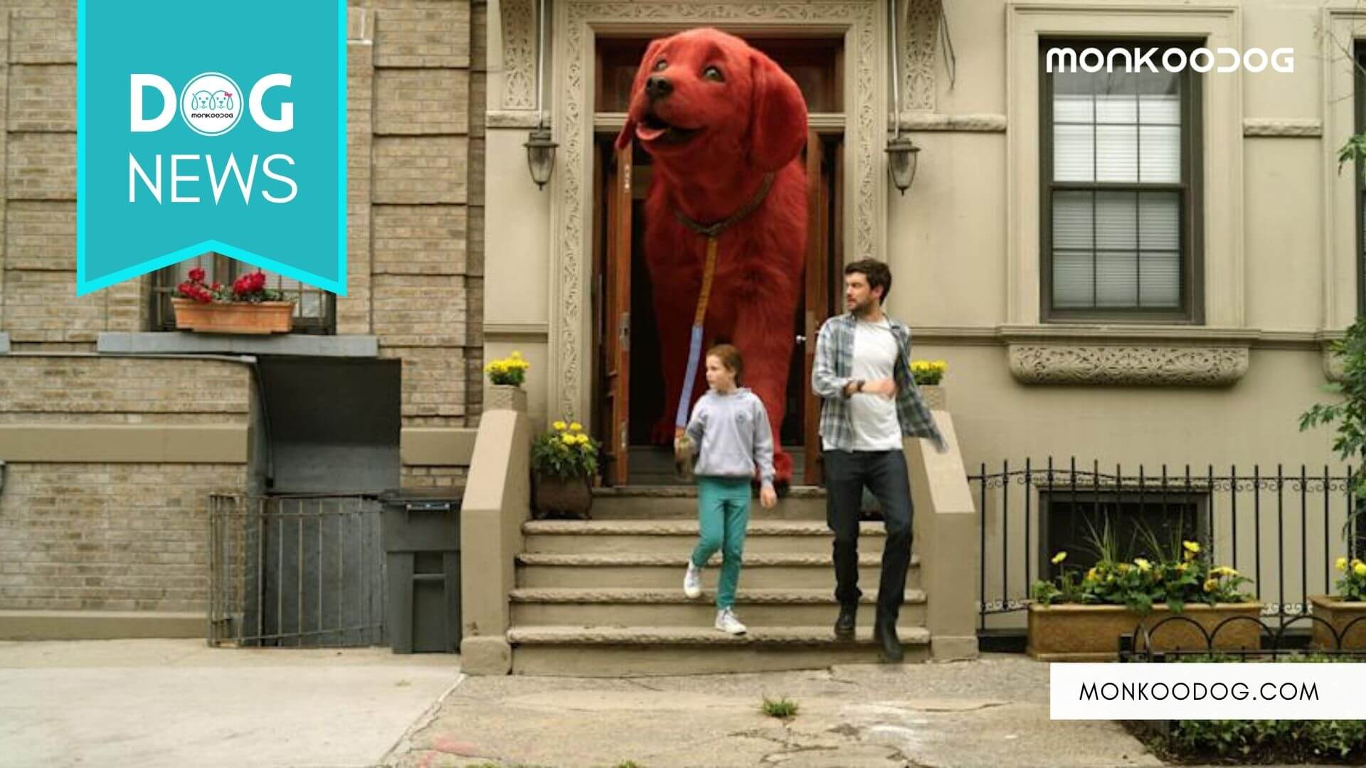 The live-action movie trailer of 'Clifford the Big Red Dog' has the people biting their nails off.