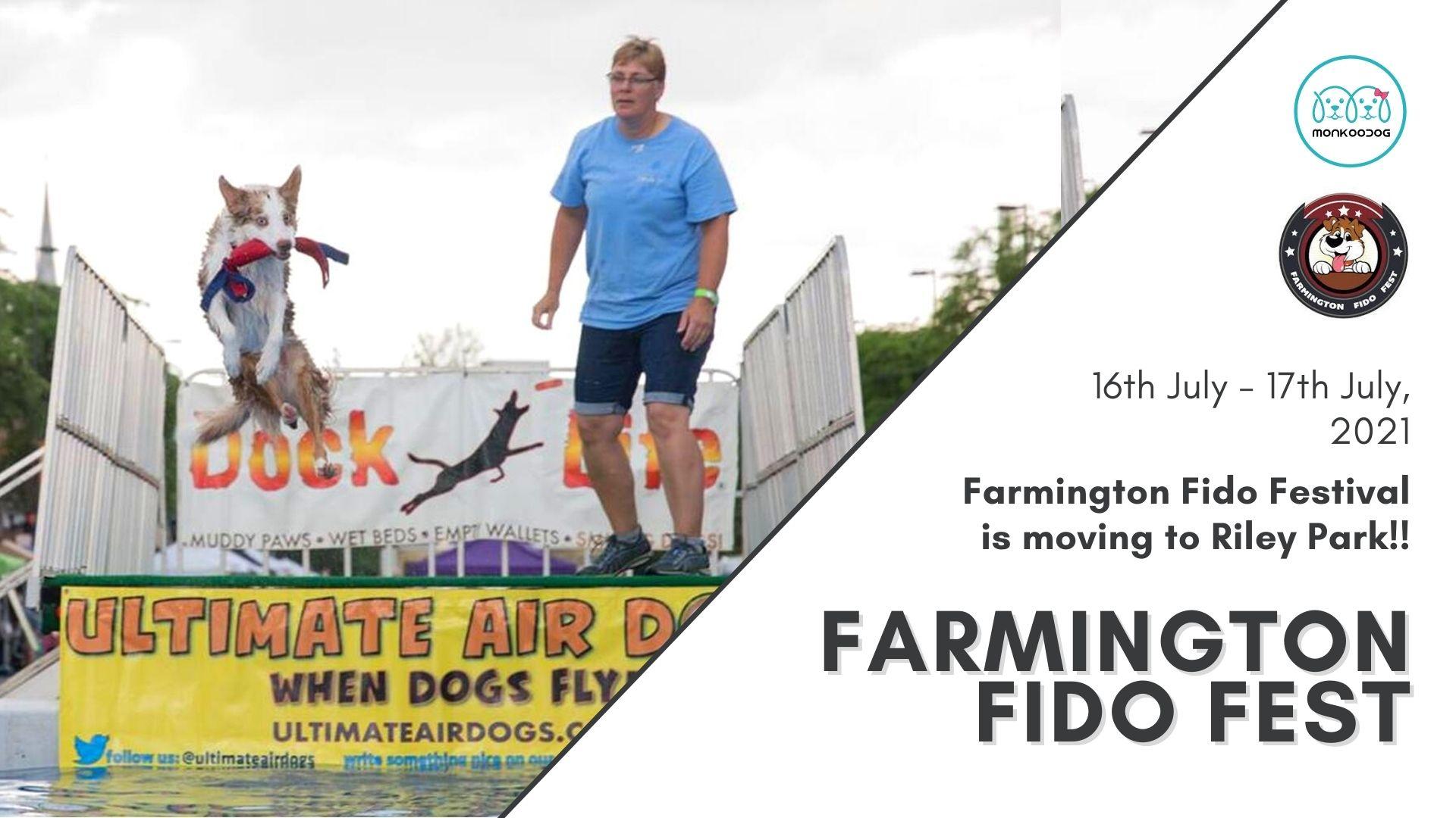 Upcoming Dog Event Farmington Fido Fest moving to Riley Park.