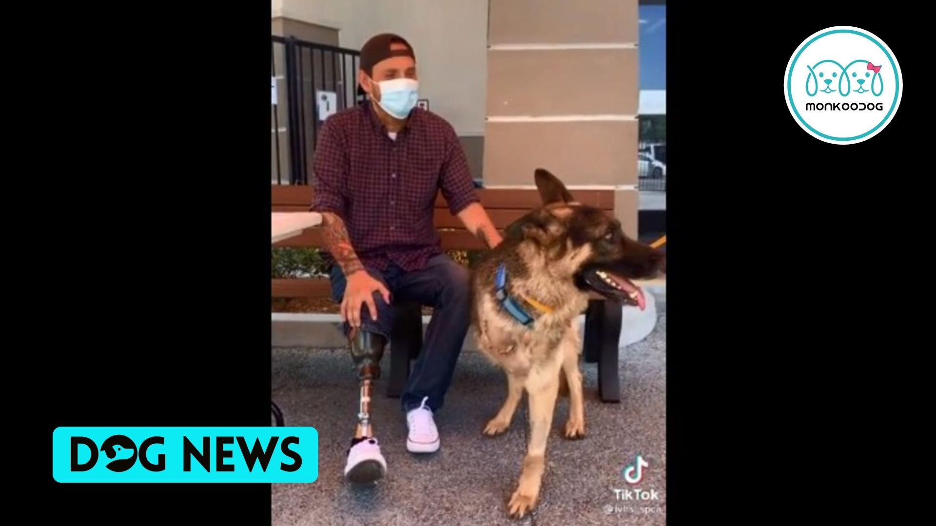 Amputee dog finally gets adopted by a Special Person. Watch the heartwarming video to know whom!!