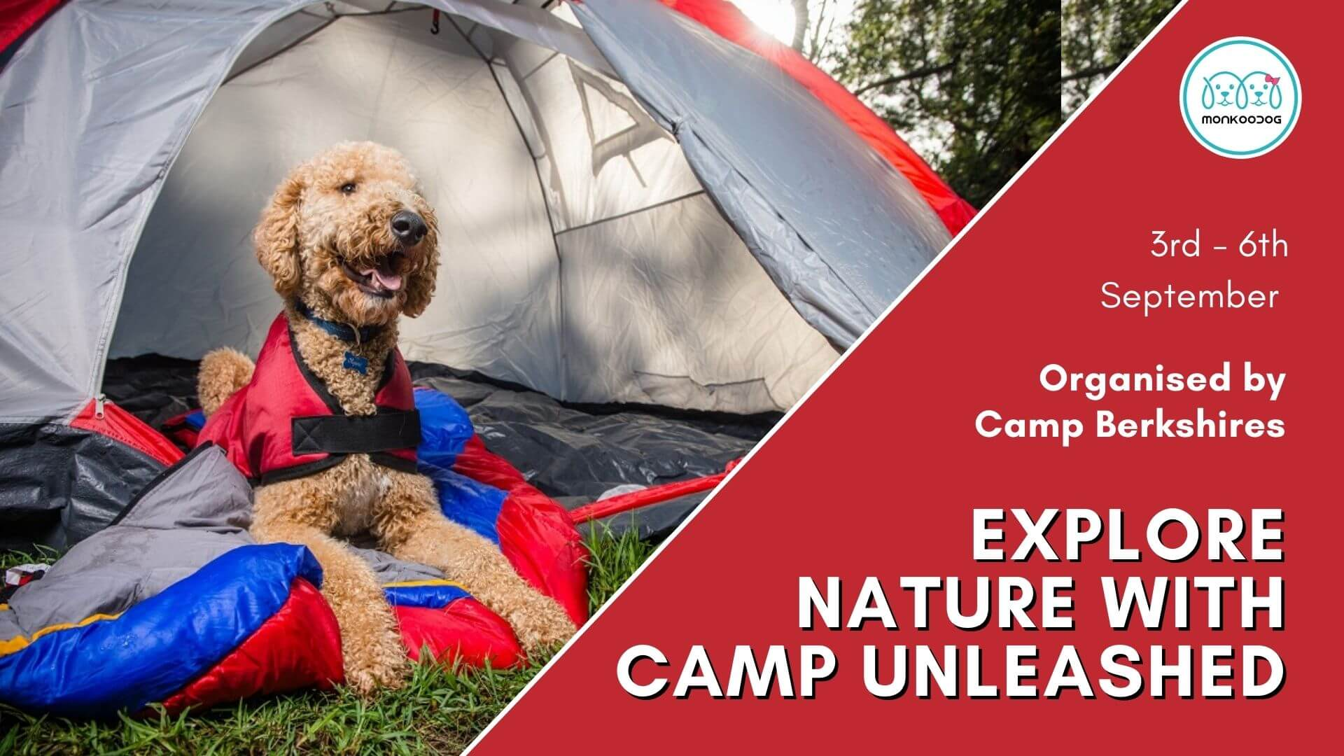Dog friendly event Explore nature with Camp Unleashed!!