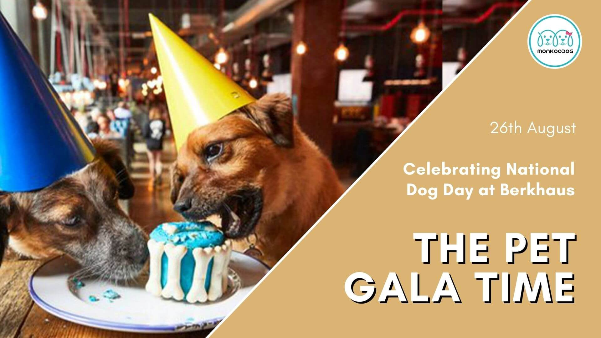 Pet Event Prime Yourself For its The Pet Gala Time