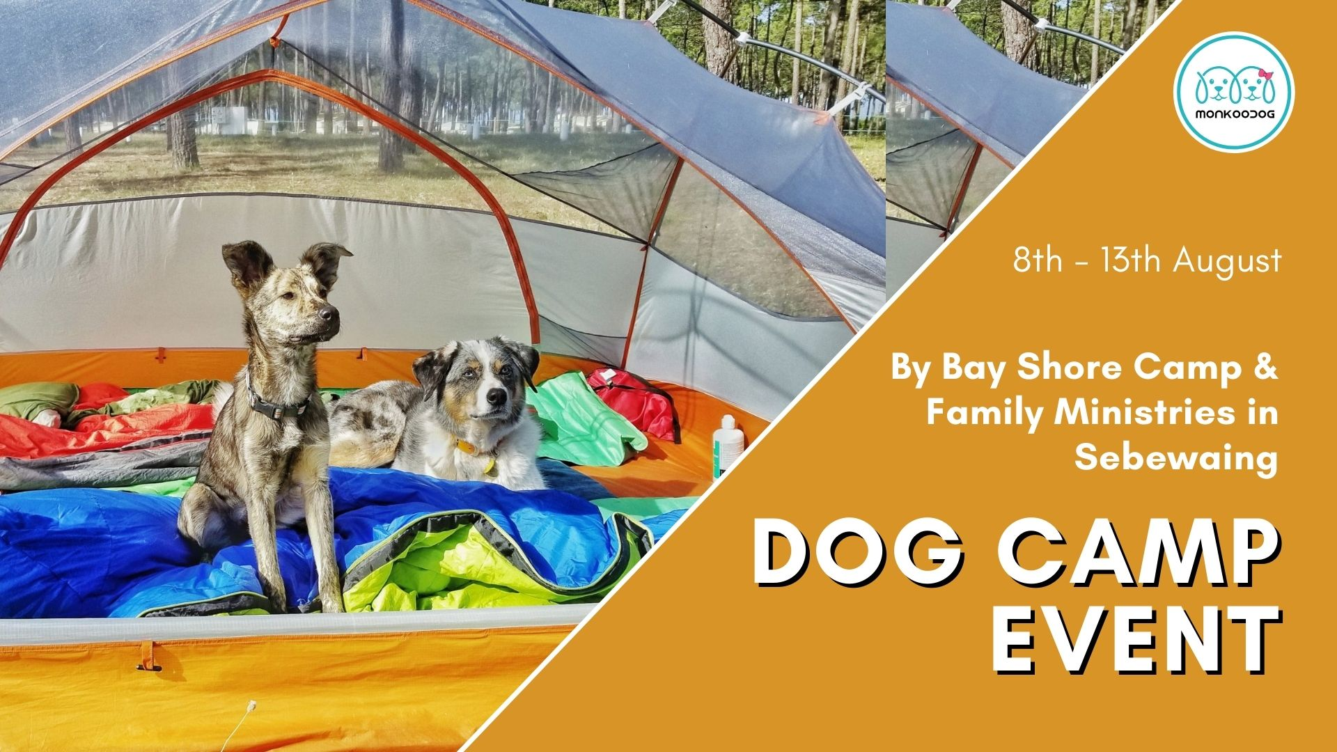 Upcoming Dog Event Dog Camp. Get set and go, for it's camping time!!