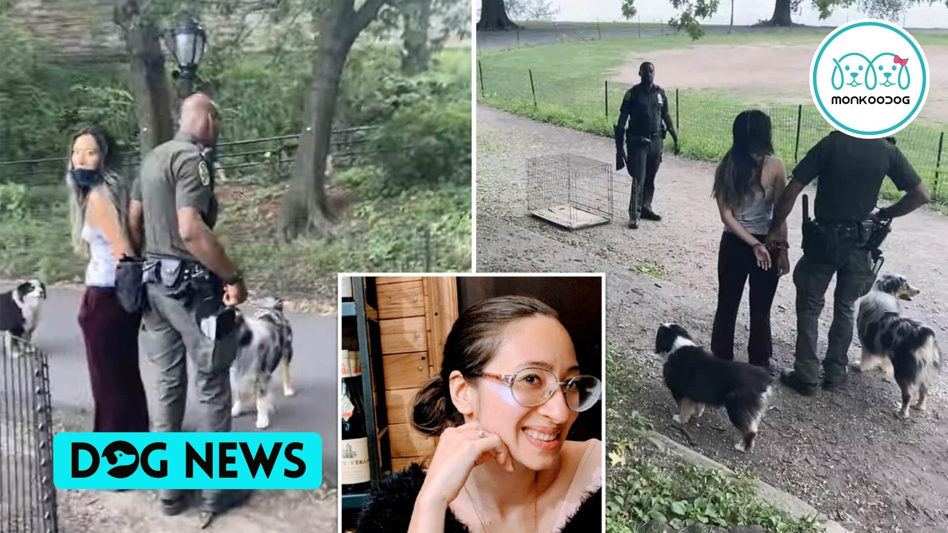 Woman booked in NYC for walking her dogs without a leash.