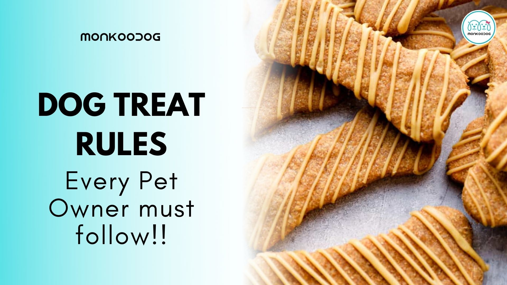 5 Dog Treat Recommendations Every Pet Owner