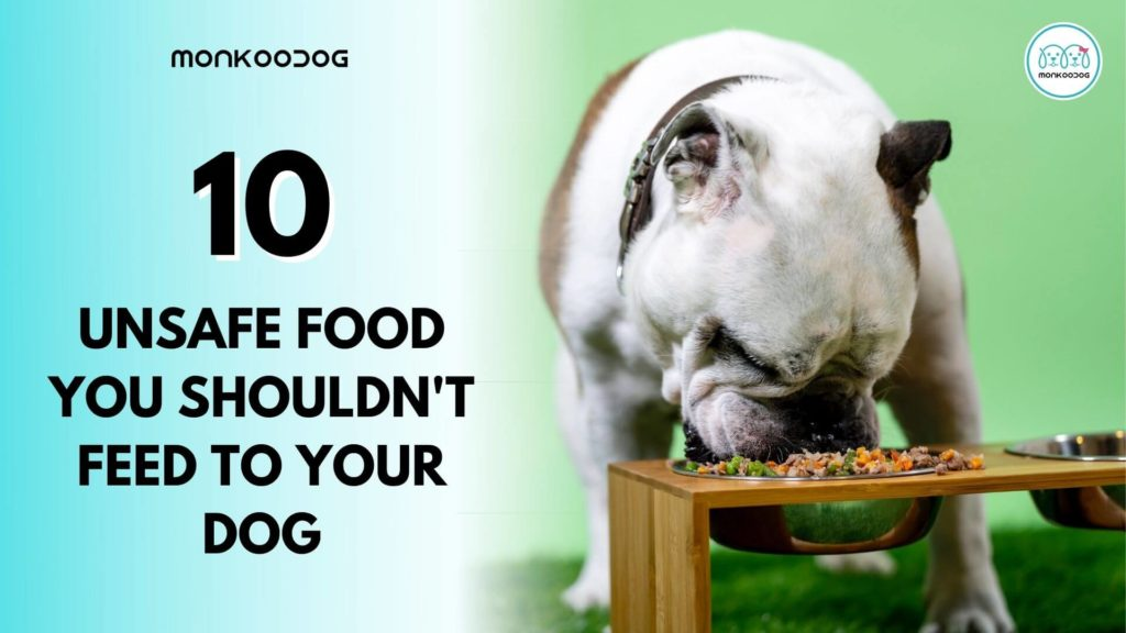 Canine healthcare - 10 Foods You Shouldn't Feed Your Pet Dog