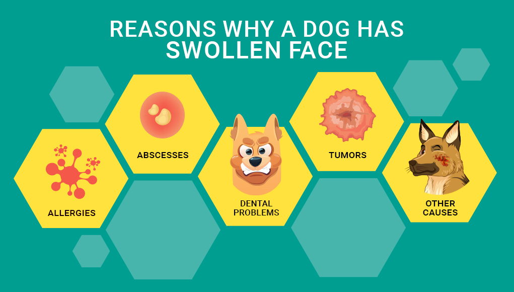 Causes of Facial Swelling