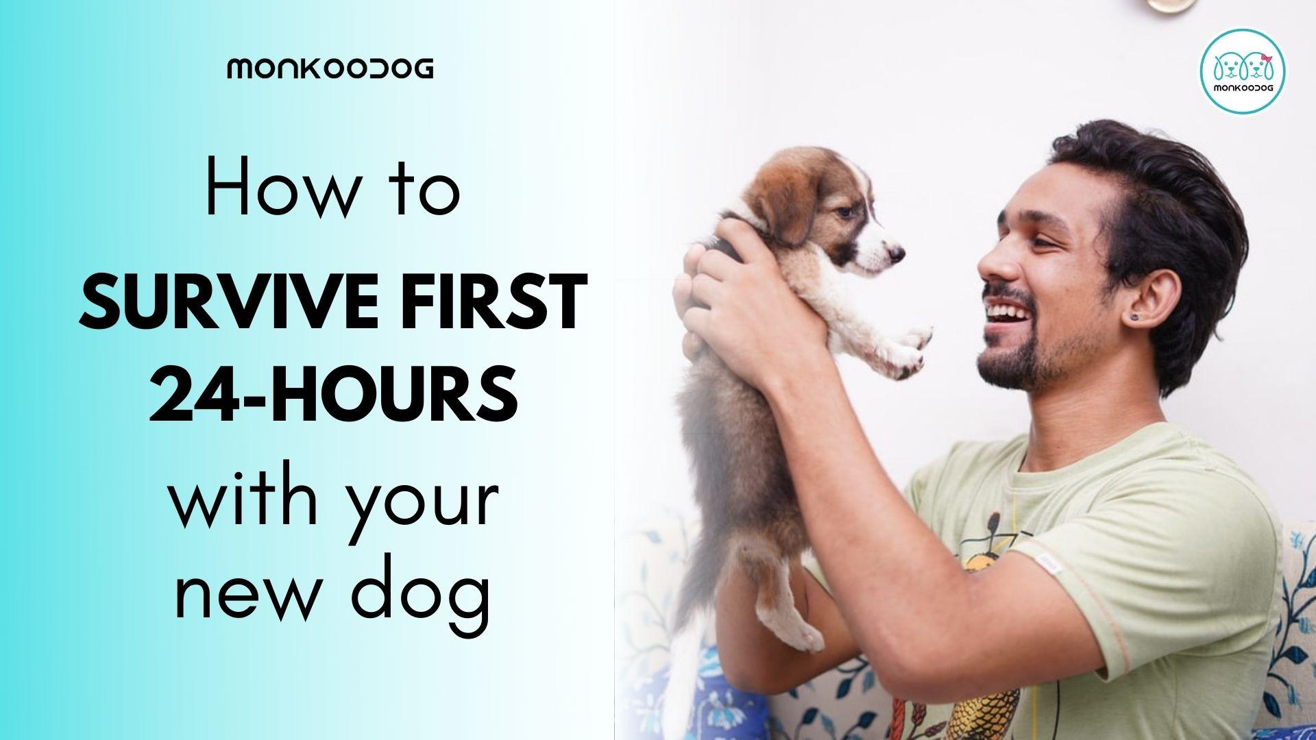 Surviving the first 24 hours New Dog
