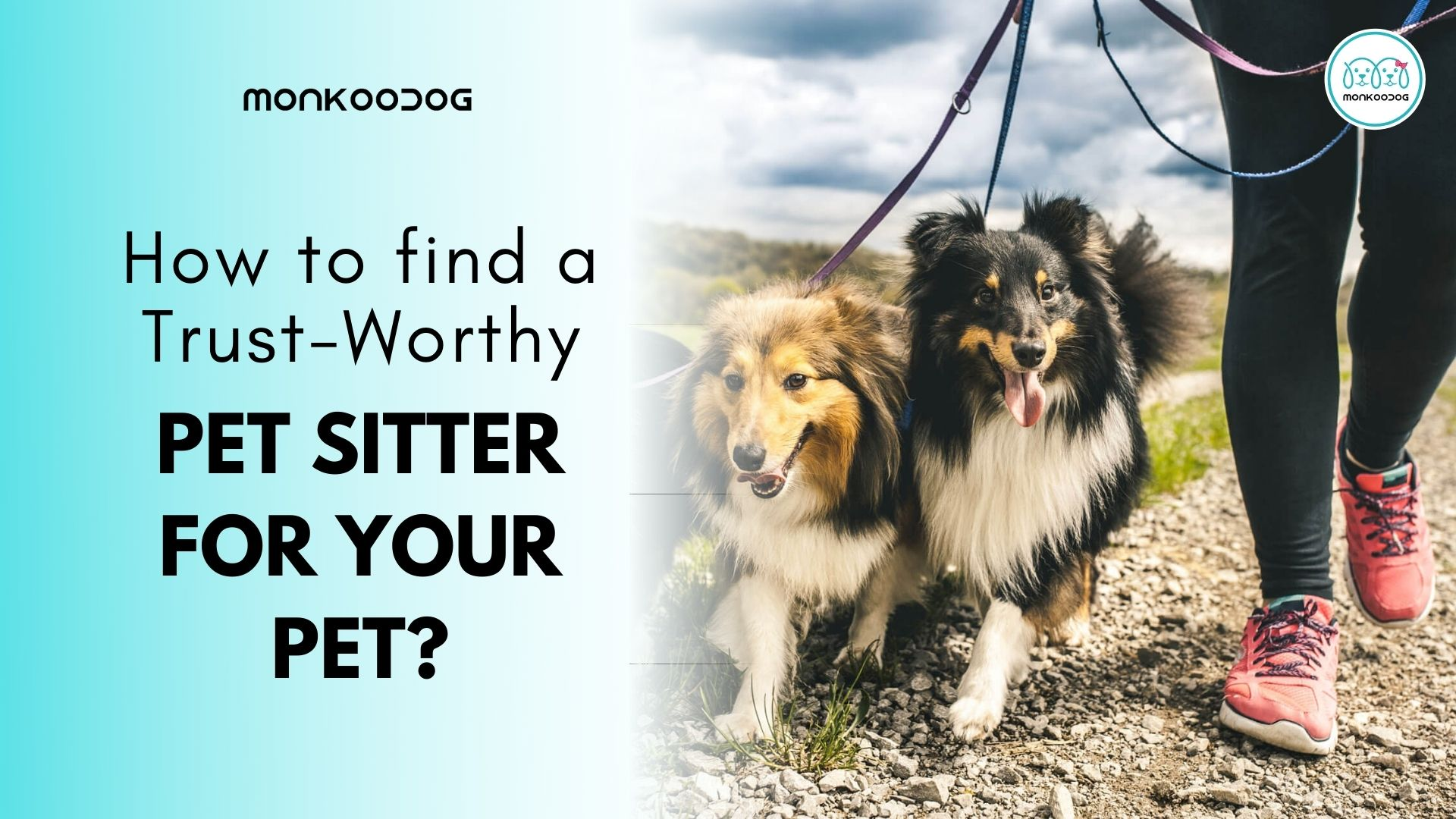 How to find a trust worthy pet sitter for your pet