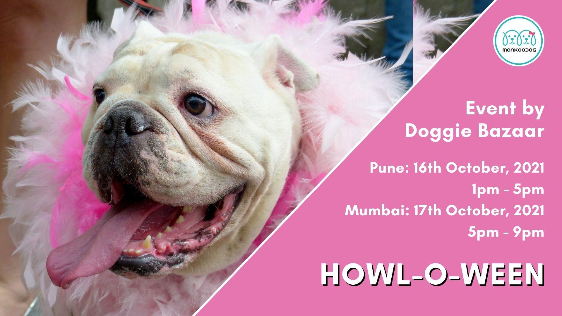 Doggie Bazaar Halloween Party