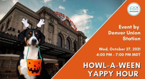 Upcoming Pet Event: Howl-A-Ween Yappy Hour